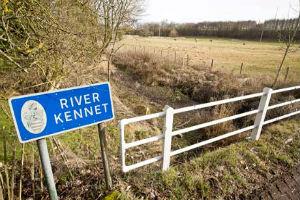 На юго-востоке Англии бушует засуха.